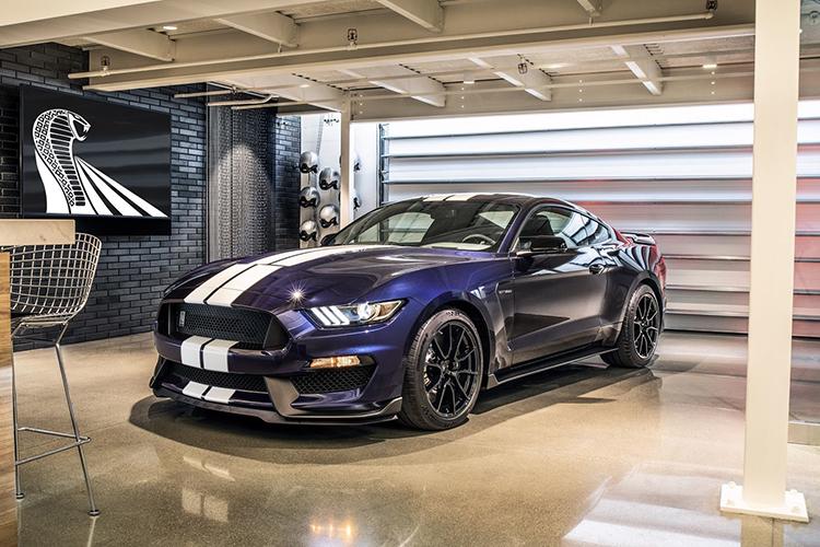 Mustang Shelby GT350 y GT350 R puristas y radicales serán sustituidos por el Mach 1