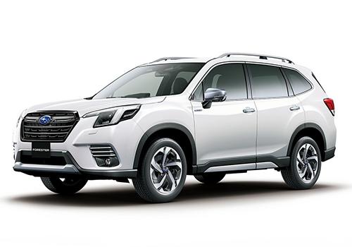 rediseñado estrena facelift diseño carrocería variantes potencia tecnología